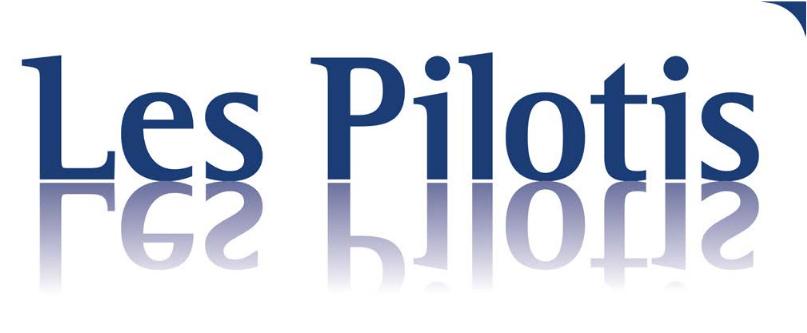 Bruxelles_sur_pilotis_image